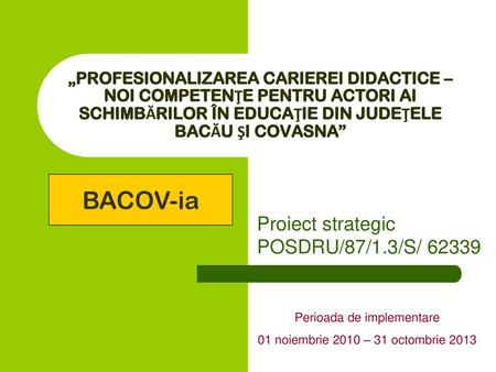 Proiect strategic POSDRU/87/1.3/S/ 62339